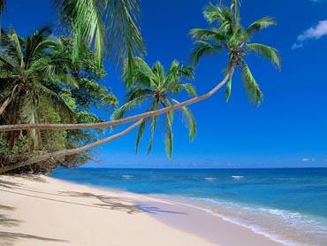 Картинки красивые лето море солнце пляж