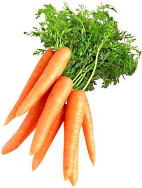 Статусы про морковь