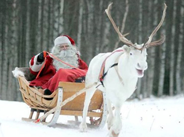 Статусы про Деда Мороза