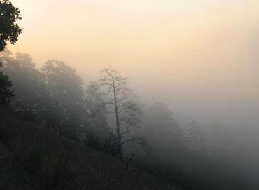 Статусы про туман